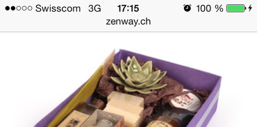 Zenway Mobile - Article